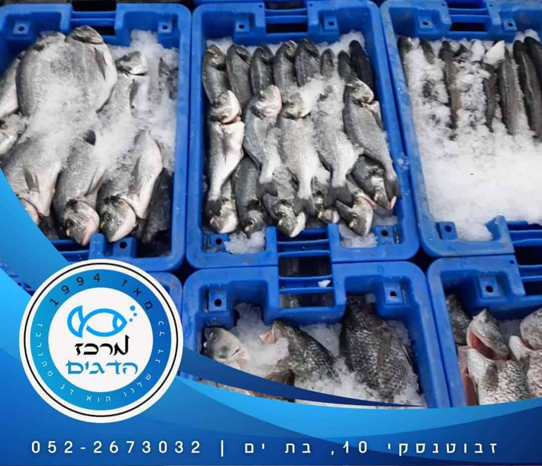 מרכז  הדגים